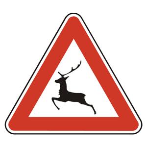 A18: Pozor, zver